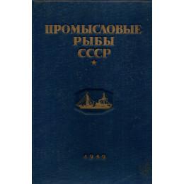 Промысловые рыбы СССР. Описания рыб